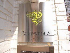 パウロニア3   (契約済み)