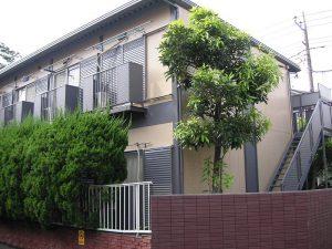【アパート】メープルハイツ 101